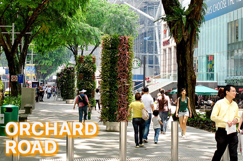3-Orchard