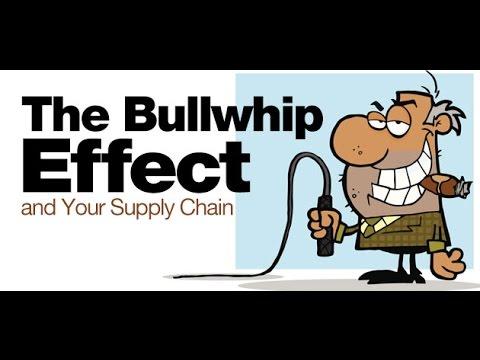 bullwhip